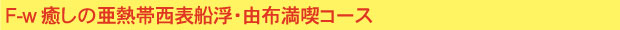 F-w 癒しの亜熱帯 西表船浮・由布満喫コース